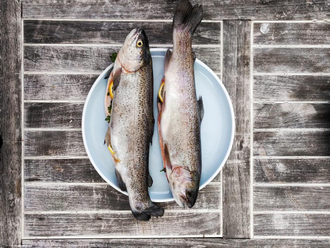 Frischer Fisch auf Teller